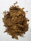 Processed Burley Tobacco, Light Air Cured Burley Tobacco