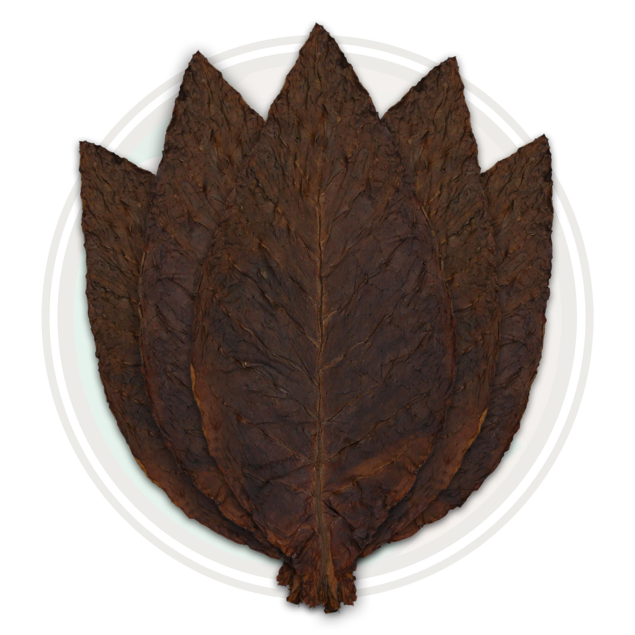 Light Fire Cured Virginia Whole Tobacco Leaf