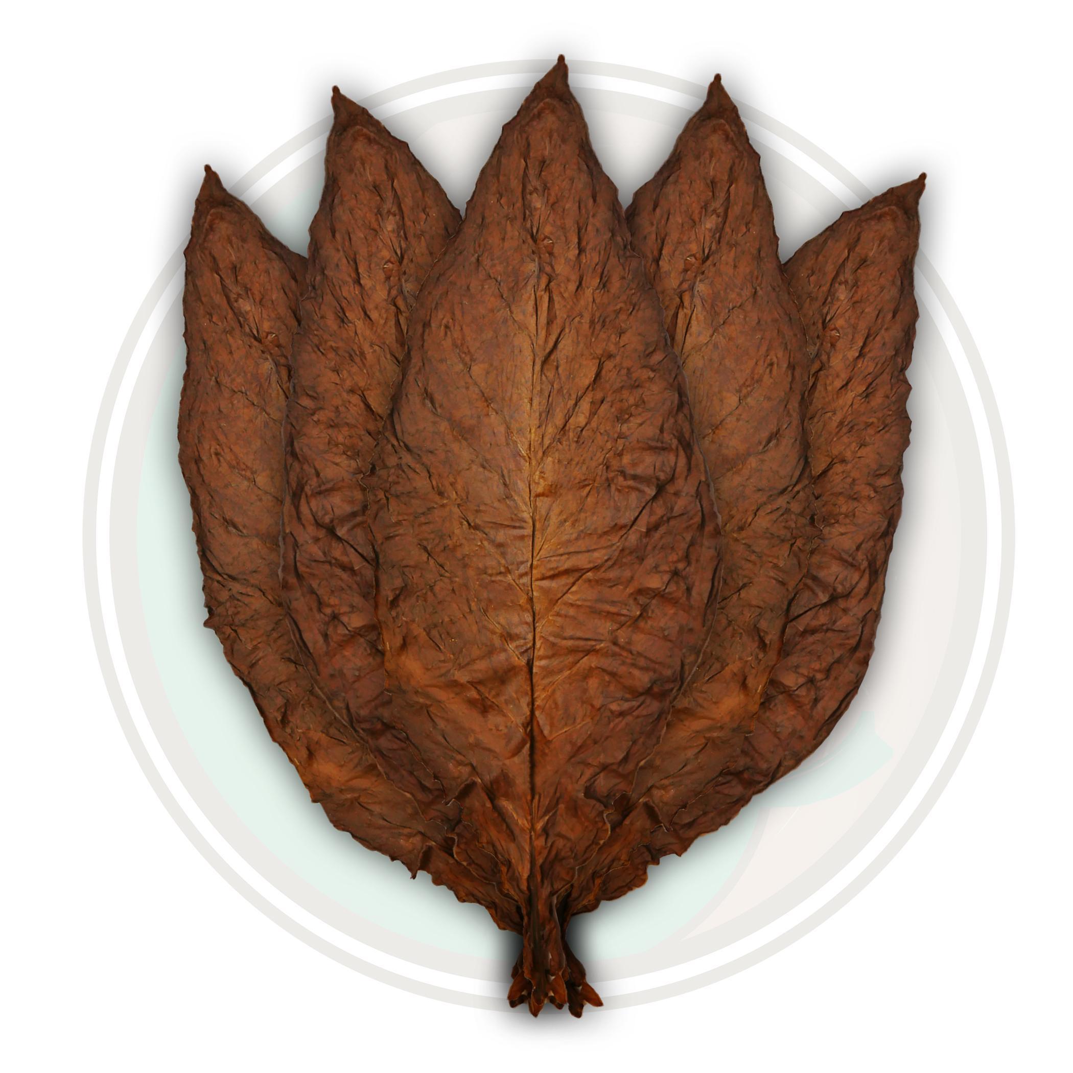 Aged QB-52 Fronto Leaf 2012 Crop Dark NYC Fronto Leaf Wrapper