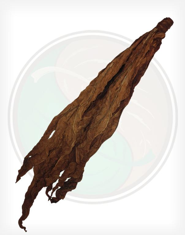 Dark Air Cured O Whole Raw Leaf Tobacco Fronto Grabba Leaf