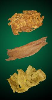 American Turkish Special Combo - Raw Tobacco Leaves
