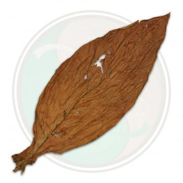 QB-52 Low Grade Pennsylvania Broadleaf Cigar Wrapper Fronto Whole Tobacco Leaf