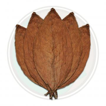Honduran Conerico Seco Cigar Wrapper Whole Tobacco Leaf