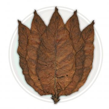 Brazilian Arapiraca Cigar Filler Leaf