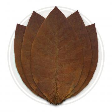 Ecuadorian Habano Viso Cigar Wrapper Whole Tobacco Leaf Cigar Wrapper Whole Tobacco Leaf