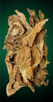 2013 American Virginia Flue Cured Tobacco Leaf For RYO Cigarettes