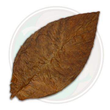 CT Broadleaf Cigar Wrapper - 1LS