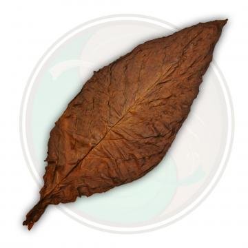 QB Dark Fronto Leaf