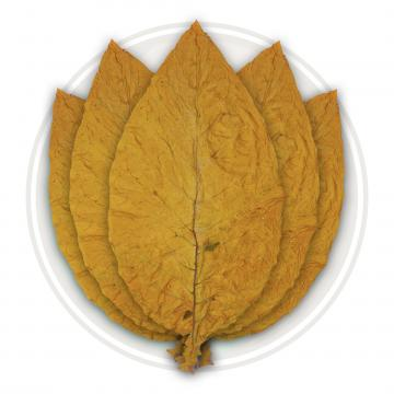 Organic Canadian Virginia Flue Cured Whole Tobacco Leaf