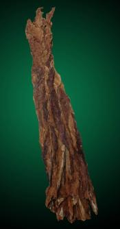 2012 Dark Air Cured Tobacco Leaf - Fronto Leaf