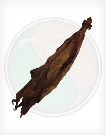 Light Kentucky Fire Cured Cigar Wrapper Fronto Whole Raw Leaf Tobacco