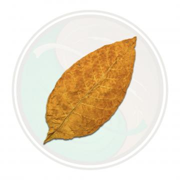 Brightleaf Sweet Virginia Flue Cured Whole Tobacco Leaf