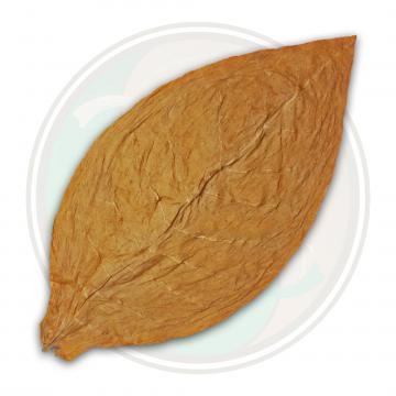 Connecticut Shade Cigar Wrapper Tobacco Leaf