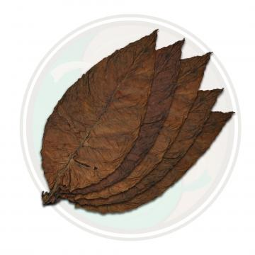 Brazilian Arapiraca Cigar Wrapper Whole Tobacco Leaf