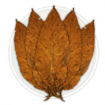 American Virginia Flue Cured Robust Tobacco Leaf