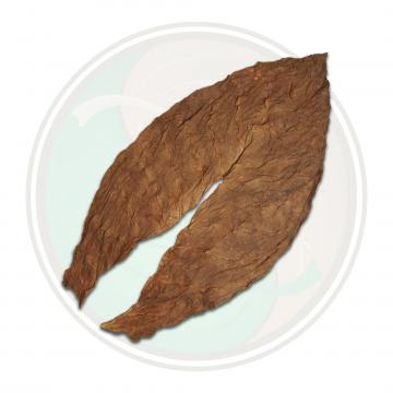 Dominican Volado Piloto Cubano Seco Cigar Filler Whole Tobacco Leaf