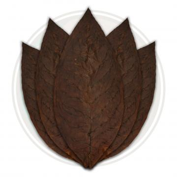 Fronto / Dark Air Cured (ALO)