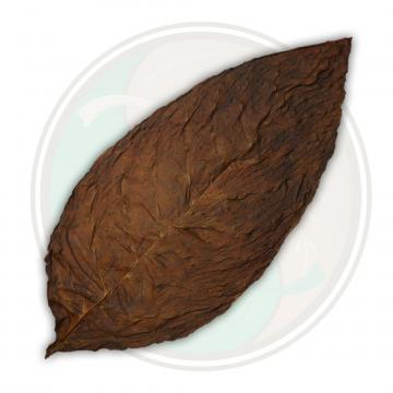 Connecticut Broadleaf Fronto Wrapper