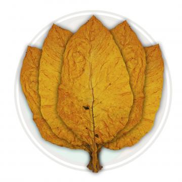 Canadian Virginia Flue Cured Tobacco Leaf