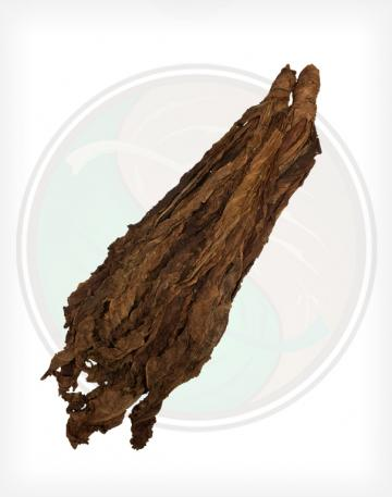 Fronto / Dark Air Cured (W1)