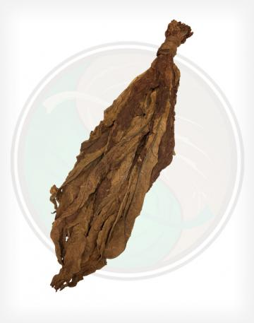 Fronto Dark Air Cured (H)