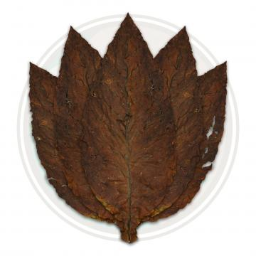 Fronto / Dark Air Cured (LL)
