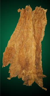 Burley Tobacco Leaf, Natural Cigarette Tobacco Leaf