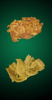 American Turkish Combo - 5 Lbs - Natural Tobacco Leaves