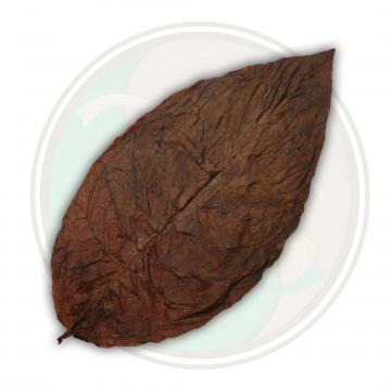 Brazilian Cubra Viso Cigar Wrapper Tobacco Leaf
