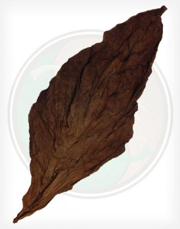 Package of 20 Dark Fronto Leaves Individual Opened Leaf