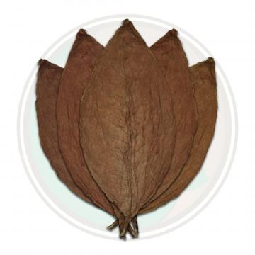 Honduran Conerican Viso Cigar Wrapper Whole Tobacco Leaf