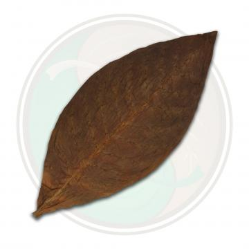 Mexican San Andres Cigar Wrapper Tobacco Leaf Only