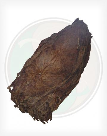Aged Nicaraguan Viso Cigar Filler Whole Raw Leaf Tobacco