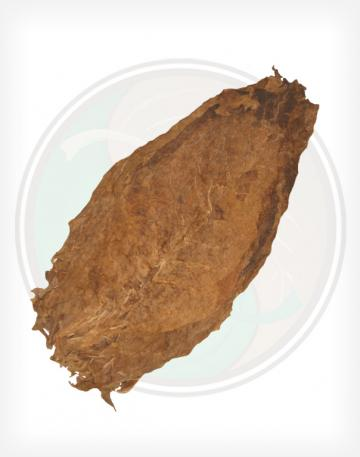 Aged Nicaraguan Seco Cigar Filler Whole Raw Leaf Tobacco