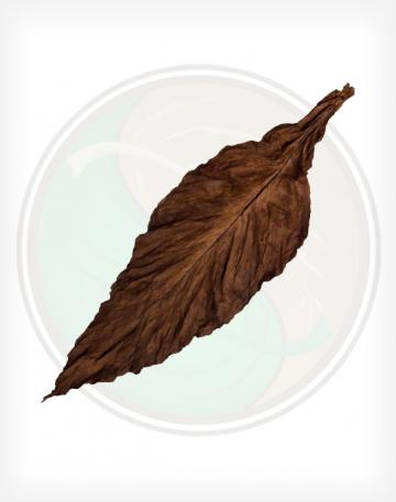 QB-52 Fronto Leaf Wrapper Opened Whole Leaf Tobacco for Packaging.