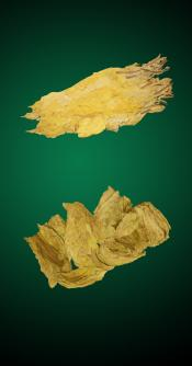 Turkish Combo - 5 Lbs - Natural Tobacco Leaves