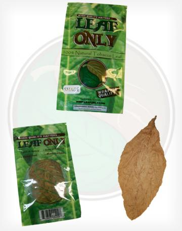 Leaf Only Brand One Single Whole Raw Tobacco Leaf Fronto Grabba
